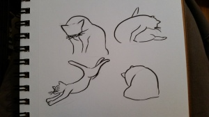 warm up sketches of cat grooming