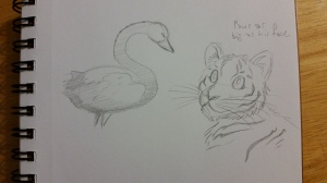 warm up sketch black swan and tiger cub