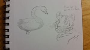 warm up sketch black swan and tiger cub